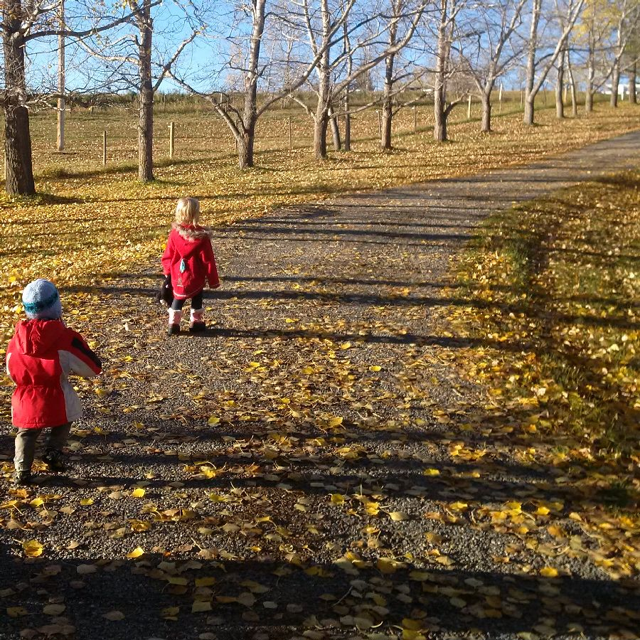 kids-path